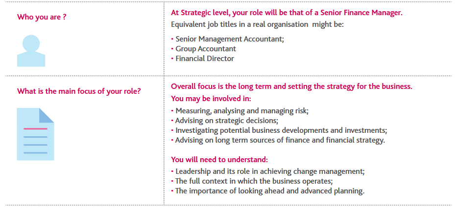 strategic case study role guidance